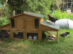 Doppeldecker Hühnerstall/ Gluckenstall
