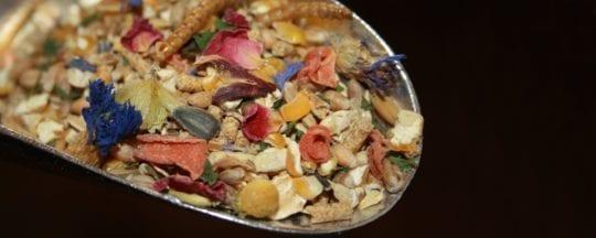 Fertigfutter mit natürlichen Zutaten