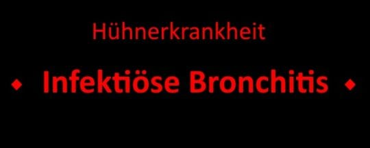 Infektiöse Bronchitis
