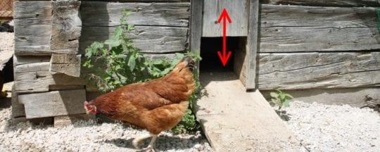 Automatische Hühnerklappe für den Hühnerstall