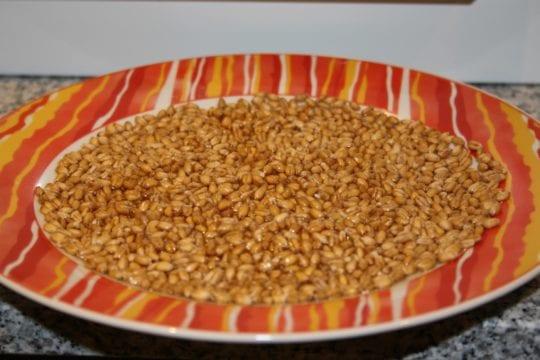 Weizen in einem Teller