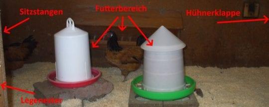 Hühnerstall: Aufteilung und Einrichtung